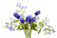 Bouquet of blue spring flowers Royalty Free Stock Images