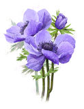 Bouquet of blue spring flowers. Wash drawing stock illustration