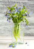 Bouquet of blue wild forget-me-not flowers. Stock Images