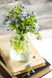 Bouquet of blue wild forget-me-not flowers. Selective focus. Sha Stock Photos