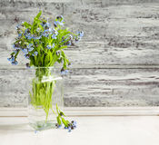 Bouquet of blue wild forget-me-not flowers Royalty Free Stock Photos