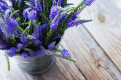 Bouquet of blue wild summer flowers in a metal bucket Royalty Free Stock Photography