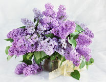 Bouquet with branches of blossoming lilac on light background Stock Photos