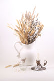 Bouquet from branches of a willow and cones in a white jug on a Royalty Free Stock Photography