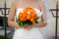 The bouquet  in the bridal's hands Stock Photos