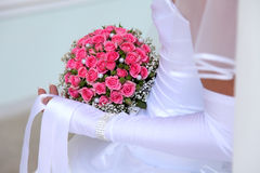 Bouquet of the bride Stock Image
