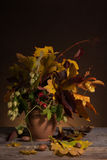 Bouquet of bright autumn leaves Stock Photo