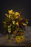 Bouquet of bright autumn leaves Stock Photos
