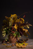 Bouquet of bright autumn leaves Royalty Free Stock Photos