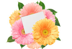 Bouquet of bright colorful gerberas and sheet of paper. On a white background stock image