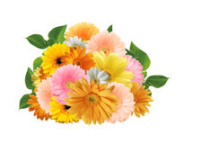 Bouquet of bright colorful gerberas. On a white background stock photos