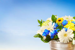 Bouquet of bright flowers in a bucket against blue sky Royalty Free Stock Photos