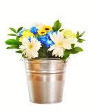 Bouquet of bright flowers in a bucket isolated over white Royalty Free Stock Images