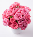 Bouquet of bright pink roses isolated Royalty Free Stock Images