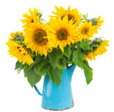 Bouquet of bright sunflowers Royalty Free Stock Photos