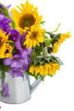 Bouquet of bright sunflowers and gladioluses. Pot isolated on whute Stock Image
