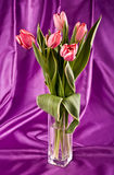 Bouquet of bright tulips Stock Photo