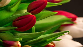 Bouquet of bright tulips blooms, rotating. Bouquet of bright tulips blooms, macro moving stock video footage
