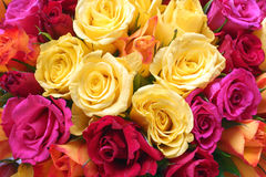 Bouquet of bright yellow, orange, red and pink roses background Royalty Free Stock Photos