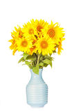 Bouquet of bright yellow sunflowers Royalty Free Stock Image