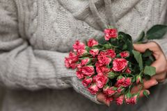 Bouquet of bush of roses in female hands on a background royalty free stock images