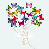 Bouquet of butterflies Royalty Free Stock Photography
