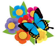 Bouquet with butterfly. Illustration of flowers with butterflies Stock Photos