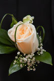 Bouquet a buttonhole Royalty Free Stock Photo