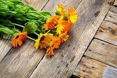 Bouquet of calendula (Calendula officinalis L.) on vintage woode Stock Photography