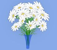A vase with daisies on a transparent background. Stock Images