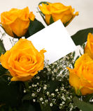 Bouquet and card 1. A bouquet of yellow roses with a blank gift card Stock Images