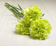 Bouquet of carnation flowers on the bright wooden floor low angle Royalty Free Stock Image