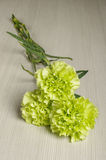 Bouquet of carnation flowers on the bright wooden floor Royalty Free Stock Photos