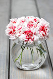 Bouquet of carnation flowers in glass vase Royalty Free Stock Images