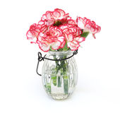 Bouquet of carnation in a glass bottle Stock Images