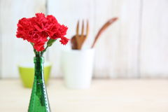 Bouquet of carnation in a glass vase Stock Image