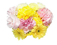 Bouquet of carnation and transvaal daisy Royalty Free Stock Photo
