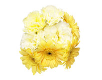 Bouquet of carnation and transvaal daisy Royalty Free Stock Image