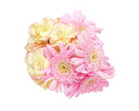 Bouquet of carnation and transvaal daisy Stock Images
