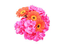 Bouquet of carnation and transvaal daisy Stock Photography
