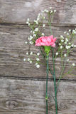 Bouquet of carnations Royalty Free Stock Photography