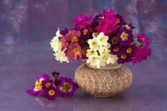Bouquet in a ceramic vase Stock Image