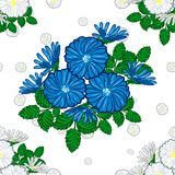 Bouquet of daisies and chamomiles vector illustration