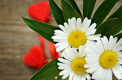 Bouquet of chamomiles and two hearts Stock Photo