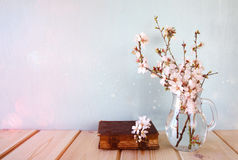 Bouquet of cherry tree branches. Stock Photography