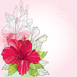 Bouquet with Chinese Hibiscus or Hibiscus rosa-sinensis and leaves on the pink background with pastel blots. Flower symbol of Hawaii stock illustration