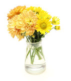Bouquet of chrysanthemum in a glass bottle Stock Photos