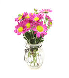 Bouquet of chrysanthemum in a glass bottle Stock Images