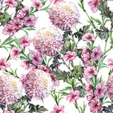 Bouquet Chrysanthemum, peach flowers, watercolor, pattern seamless. Bouquet  Chrysanthemum  peach flowers white background watercolor  handmade pattern seamless Stock Images