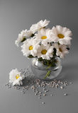 Bouquet of chrysanthemums Royalty Free Stock Images